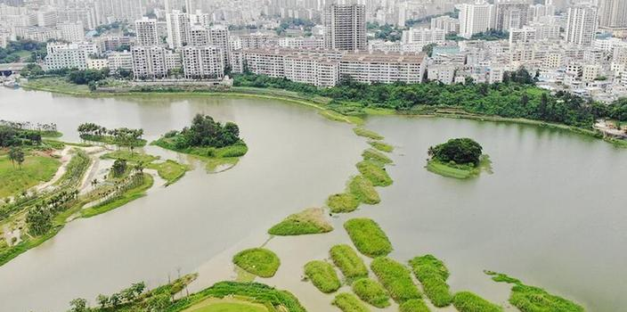 航拍海口美舍河凤翔湿地公园