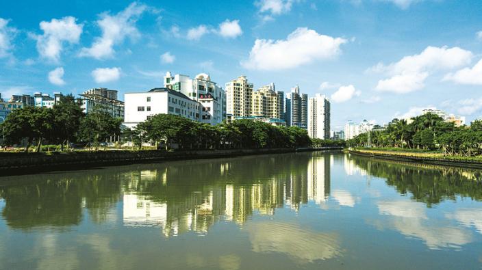 海口:城市更新催开文明之花
