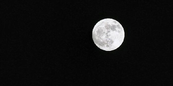 中秋月儿圆(组图)