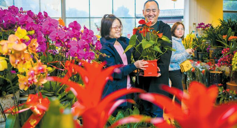 澳门葡京官方娱乐平台:新春到 鲜花俏