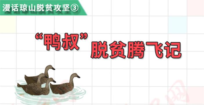 """漫话琼山脱贫攻坚③:""""鸭叔""""脱贫腾飞记"""