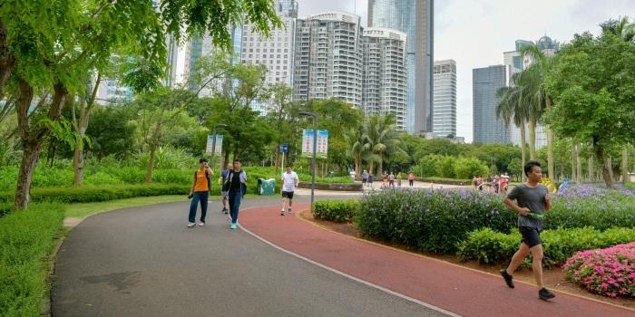 """大发极速六合:城市""""动脉""""添活力 畅享绿道""""慢生活"""""""