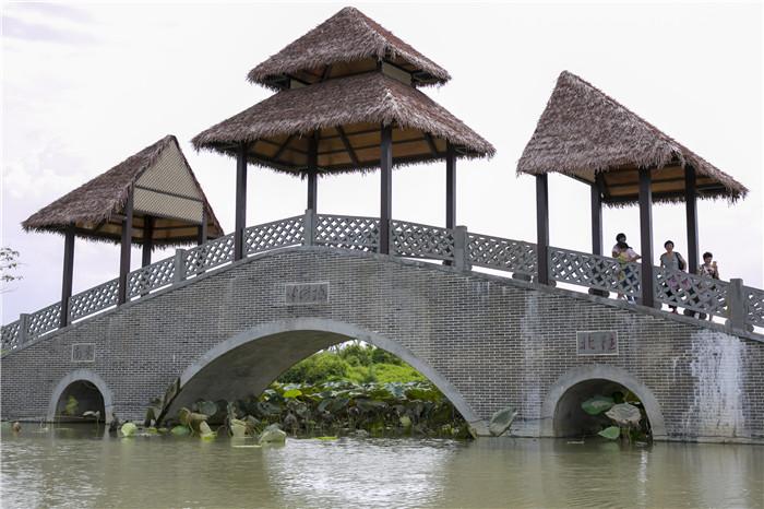 海口江东新区:水清天蓝生态美 和谐宜居人欢乐