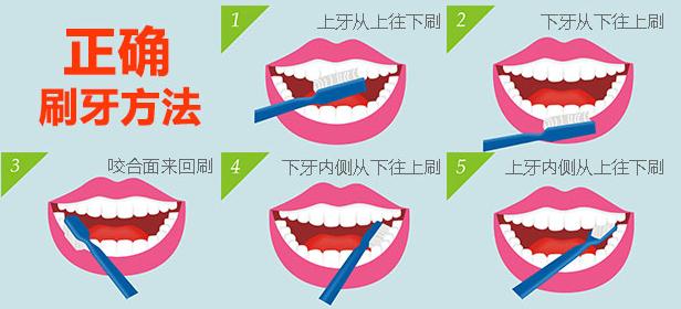 正确的刷牙方法。(网络配图)   9月20日是第29个全国爱牙日,今年的主题是口腔健康 全身健康。海南口腔医院主治医师蔡天恒提醒,牙科疾病关乎人体的全身健康,其中以刷牙出血为征兆的牙周类疾病是损害中国人民群众口腔健康的常见病、多发病,尤其对心血管疾病、糖尿病、胃病患者来说是沉重的负担。此外,牙齿畸形容易给青少年儿童造成心理疾病。而对于准妈妈来说,孕期牙病的治疗不仅影响自己的身体,还会影响胎儿的发育。蔡天恒提醒,定期口腔检查是预防牙科疾病的重要手段。